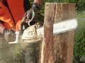 30 Year Established Tree Surgery Business - Ref 1346